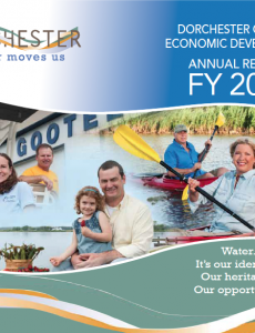 DCED FY15 annual report